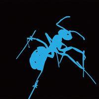Kunstprojekte: Siebdruck Ameise